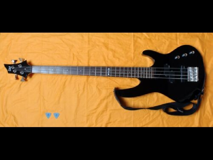 Guitare Basse ESP LTD B-50 BLK