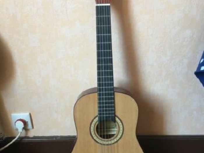 guitare tenson student 1/2 + house de transport
