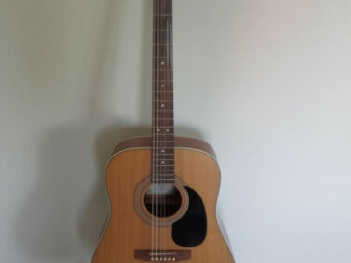 Guitare Acoustique / Folk Cort