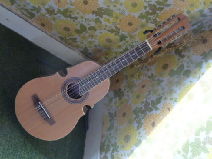 10 strings musical instrument, sold as is