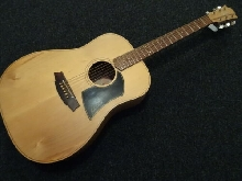 Guitare acoustique Cole Clark FL 1