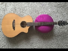 Breedlove Passport C250 Me Natural Mint