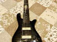 Spector legend custom 6 MYRATH 1/4 fretless