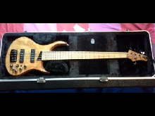 MTD Kingston Z5 Custom (Sandberg/Norstrand Big Single/Bartolini) Basse/Bass