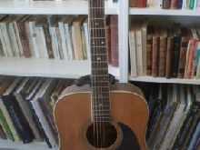 guitare acoustique Morris W 609 TM 1977 - copie Martin