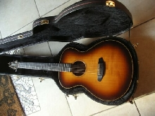 Guitar Breedlove Oregon USA