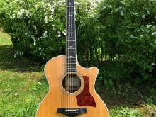 TAYLOR 814 CE collector