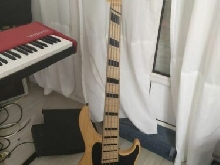 Grosmann Classic 5 J fanned frets (type jazz bass active)