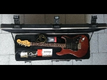 Fender American Standard Stratocaster FRS Limited edition hand stained SSS