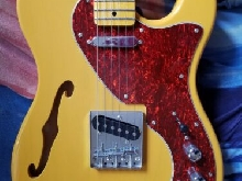 Telecaster Thinline  J&D brothers
