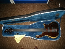 Mayones Victorious 5 fretless